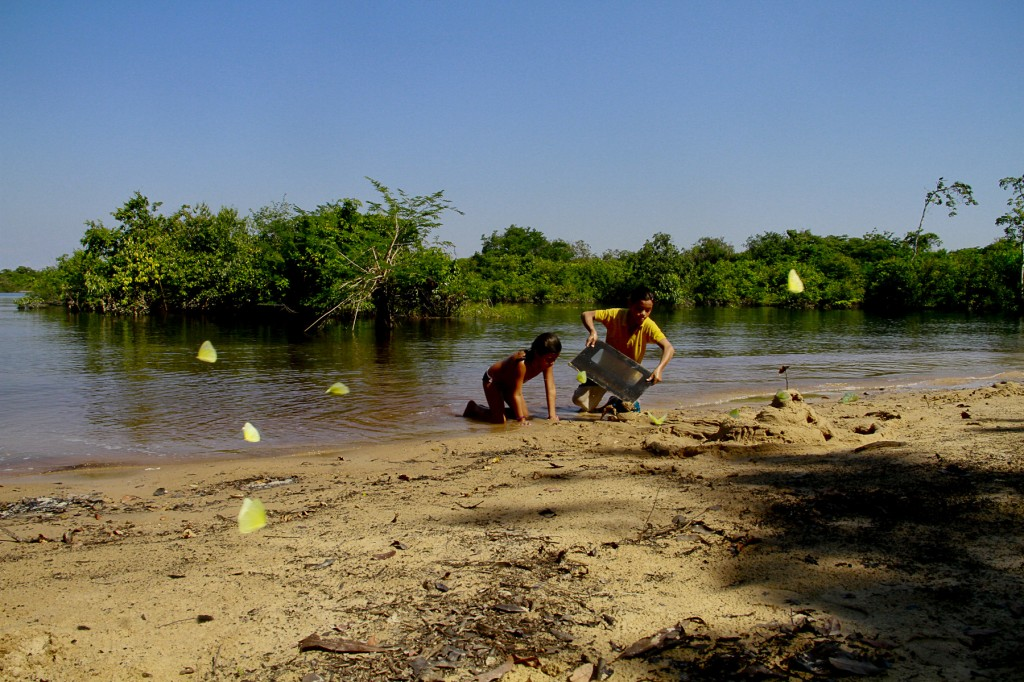 O Tupé é um paraíso ecológico da zona rural de Manaus. (Foto: Alberto César Araújo/Amazônia Real)