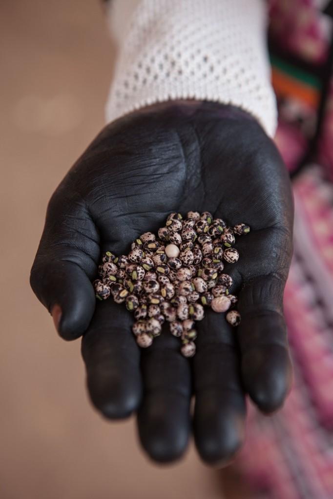 feira-de-sementes-tradicionais-kayapo-foto-simone-giovine_afp-5