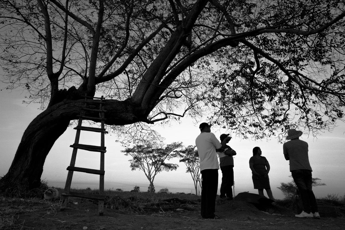 Famílias Guarani Kaiowá serão despejadas nesta segunda-feira de terra tradicional, informam lideranças