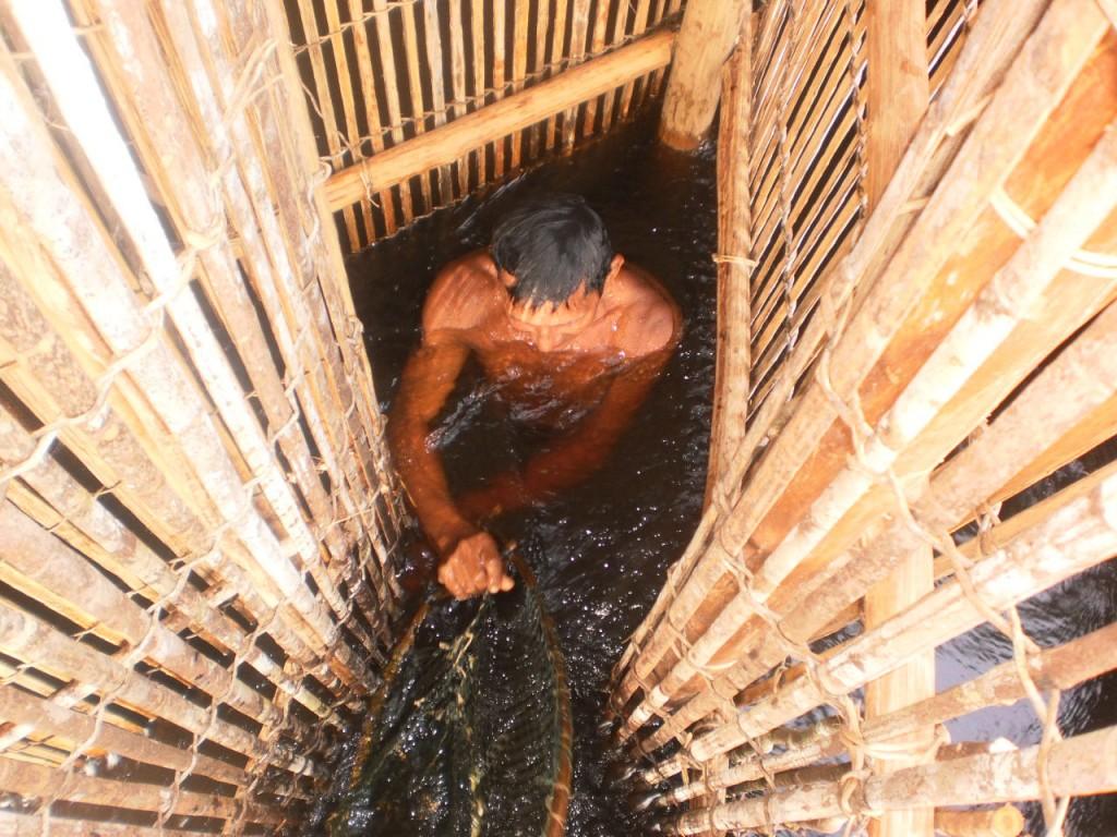 Povos indígenas do Rio Negro. (Foto: Ray Baniwa/Foirn)