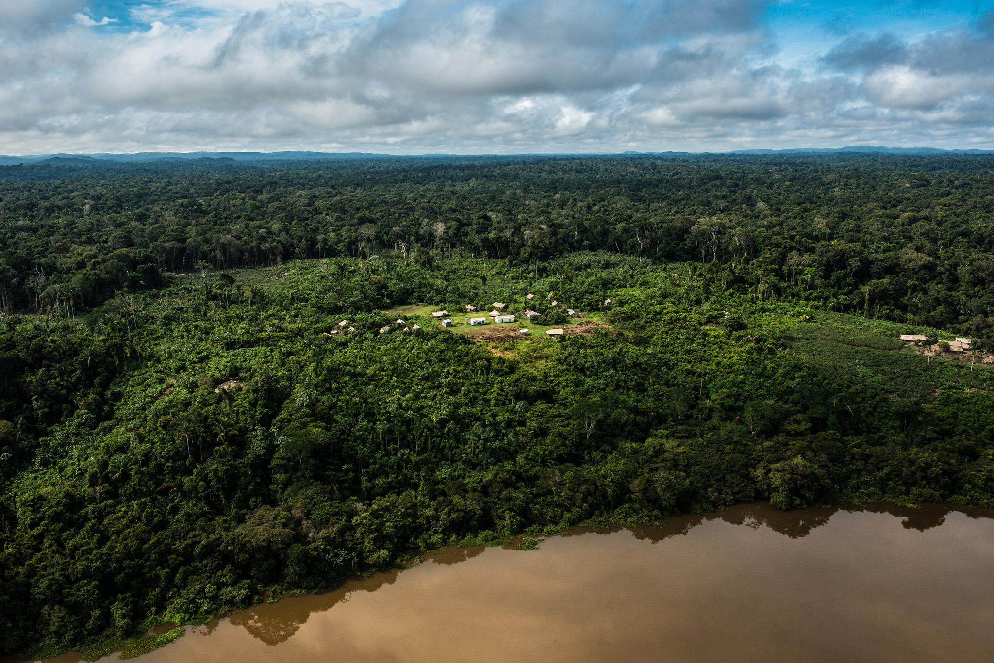 A floresta e o rio Tapajós. (Foto: Fabio Nascimento/Greenpeace)
