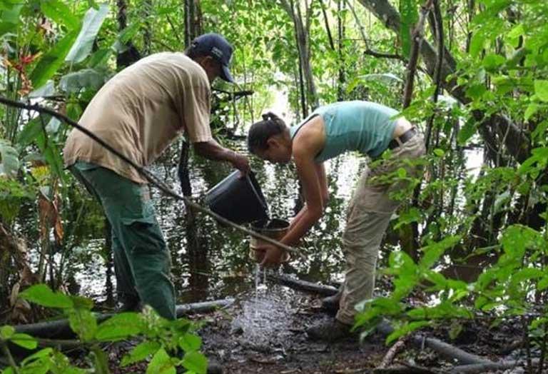 Gabriela trabalhando no sítio Hatahara, em Iraduba (Foto: Val Moraes/Mongabay)
