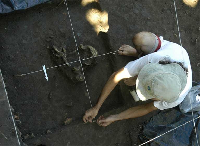 Escavações no sítio pré-histórico Hatahara revelaram uma grande diversidade de ossos de peixes. (Foto: Val Moraes/Mongabay)
