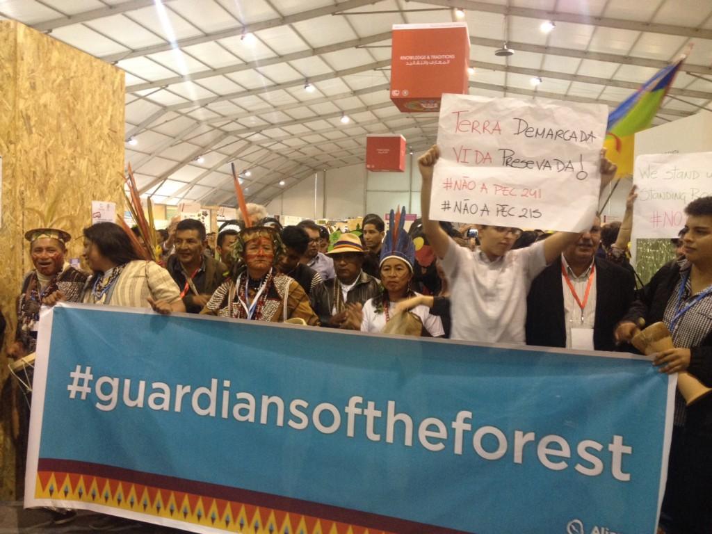 Indígenas querem os direitos reconhecidos. (Foto: Rafaela Diedrich/PojetoCasperNaCOP22)