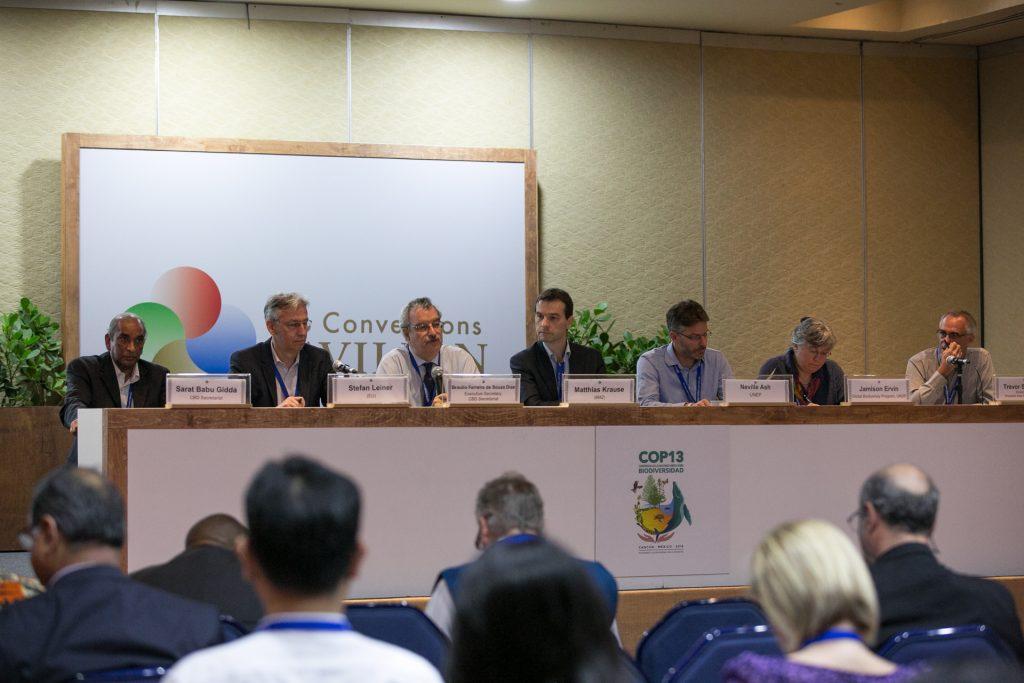 Ao centro da mesa está o secretário geral da COP13 da ONU, Braulio Ferreira de Souza Dias(Foto: IISD Reporting Services (IISD RS))