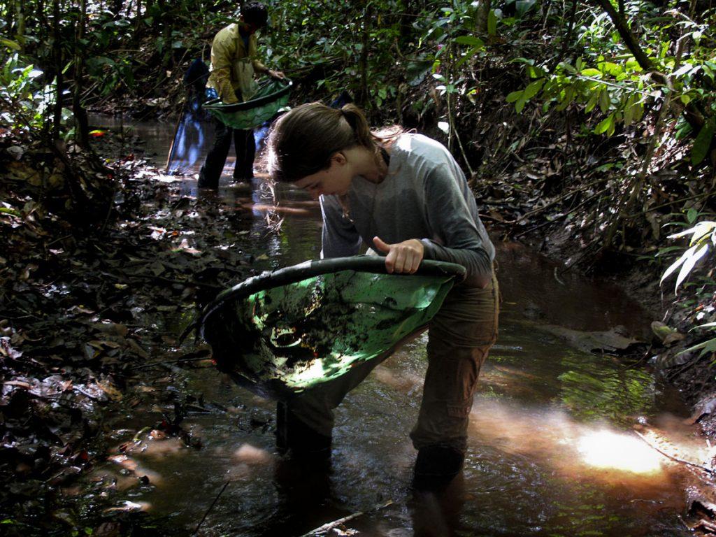 A pesquisadora Cecília Gontijo no trabalho de campo em Paragominas (Foto: RAS)