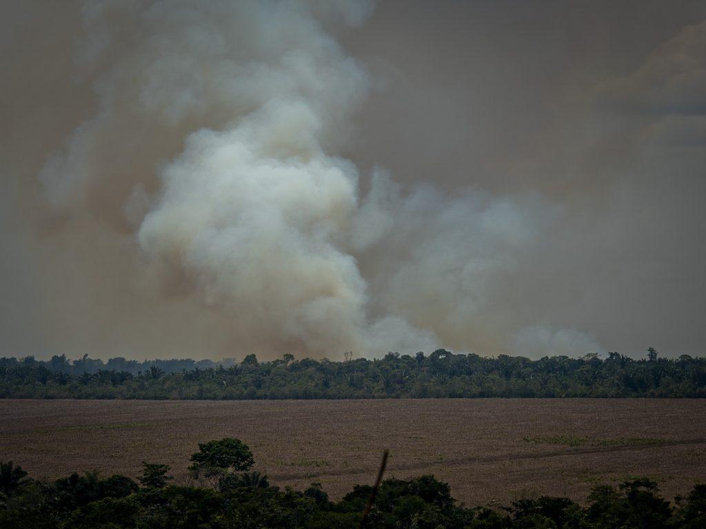 Queimada em área agrícola em Santarém (Foto: Adam Ronan/ECOFOR)
