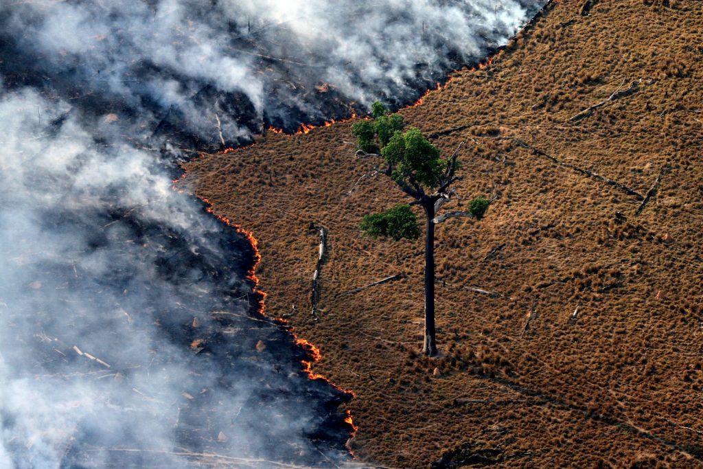 Queima de pastagem em área desmatada na Amazônia (Foto: Rodrigo Baleia/Greenpeace)