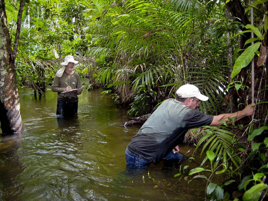 Trabalho de campo em Paragominas (Foto: RAS)