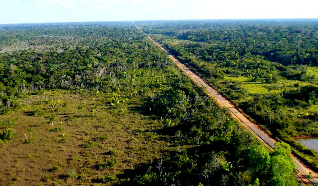 BR-319 e a destruição da floresta amazônica