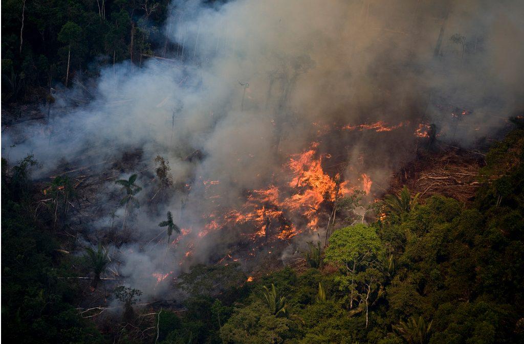 Desmatamento Amazônia (Foto: Daniel Beltra/Greenpeace)