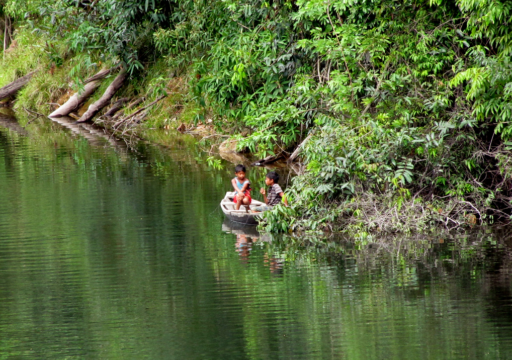 População indígena que vive no entorno da BR 319 (Foto: Nelson Luiz Wendel)