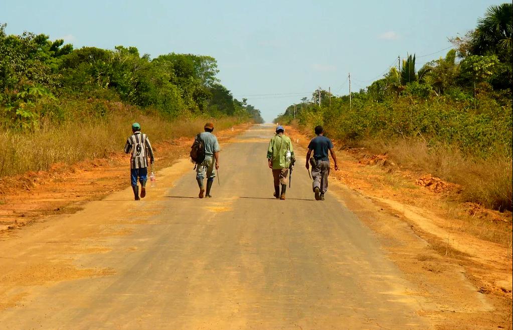 BR-319 ameaça povos indígenas 4:– A inviabilidade econômica da estrada