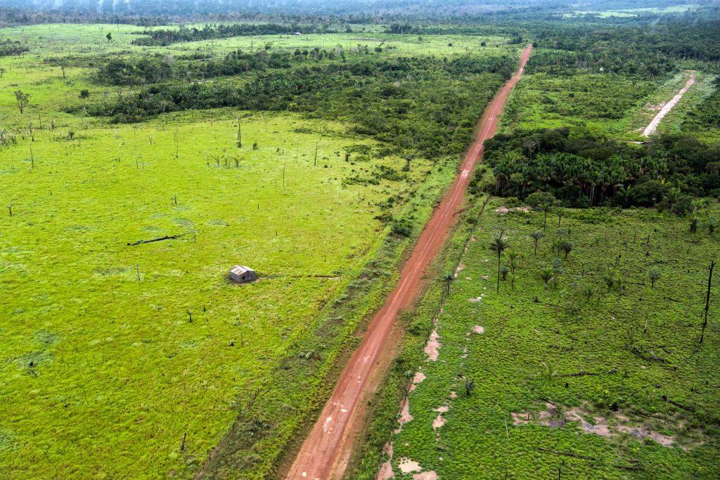 Em Maués o desmatamento no entorno das margens da rodovia Transamazônica (Foto: Daniel Beltrá/Greenpeace)