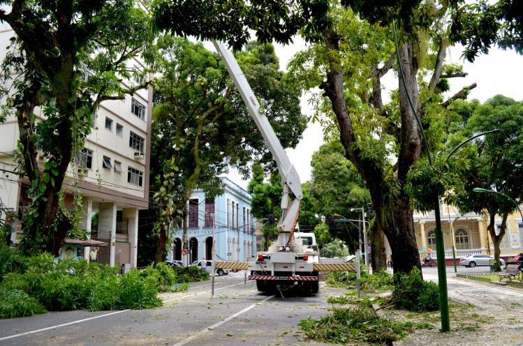 Poda de mangueiras no centro de Belém (Foto: Tassia Barros Comus)