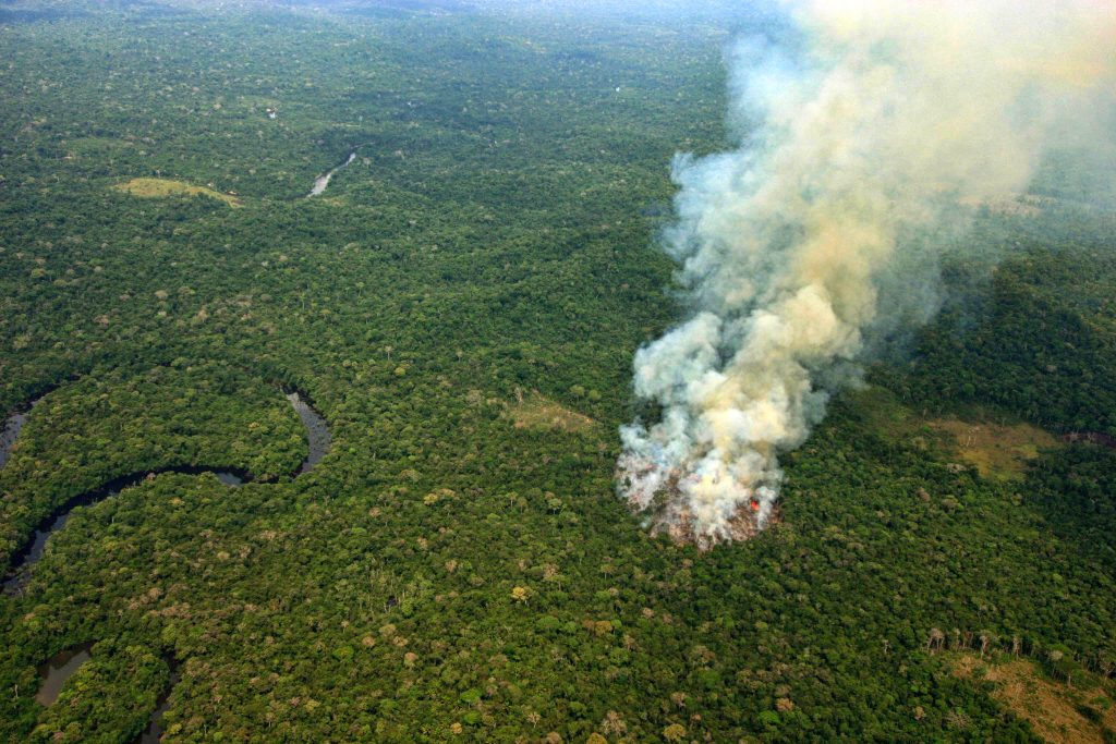 Queimada no sul do Amazonas (Foto Alberto César Araújo/Amazônia Real)