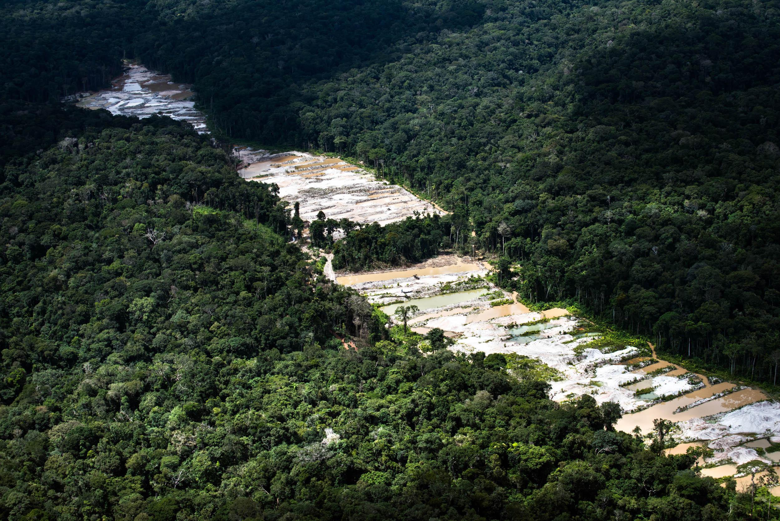 Licença simplificada e mineração são prioridades para Amazonino e Braga no Amazonas