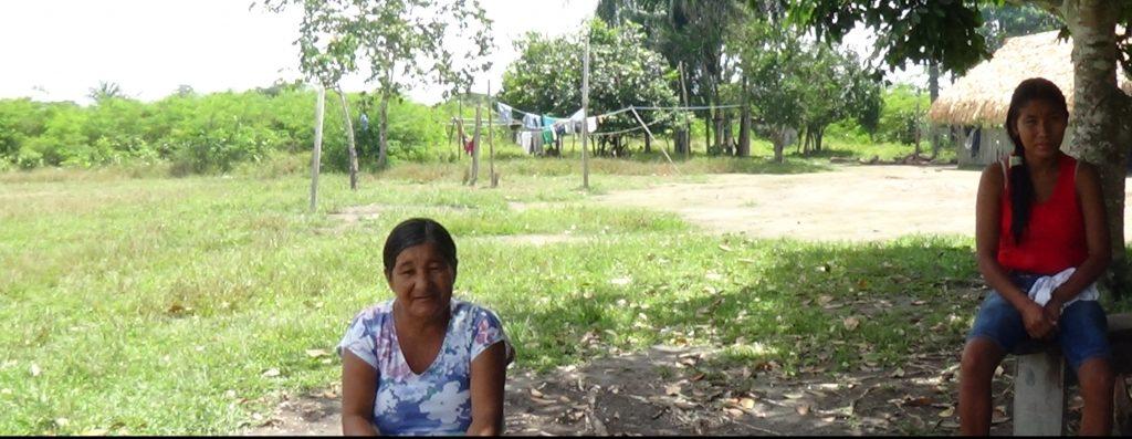 Valmira Kirixi Munduruku ( Sucena Shkrada Resk/FTP – ICV)