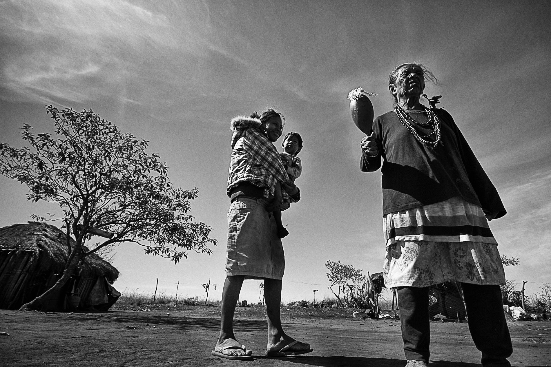 Terra Indígena Guyraroká no Mato Grosso do Sul teve a portaria declaratória suspensa em 2014 pelo STF (Foto: Ana Mendes/2016/Amazônia  Real)
