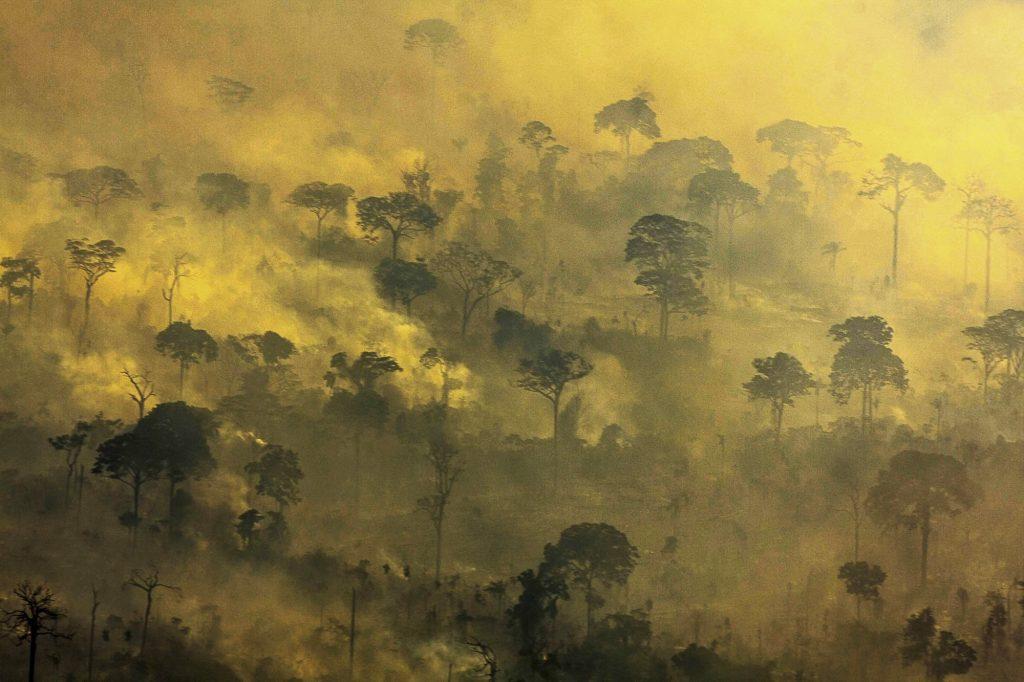 Queimadas e desmatamentos são ameaças às florestas em Alta Floresta, no Mato (Foto: Alberto César Araújo)