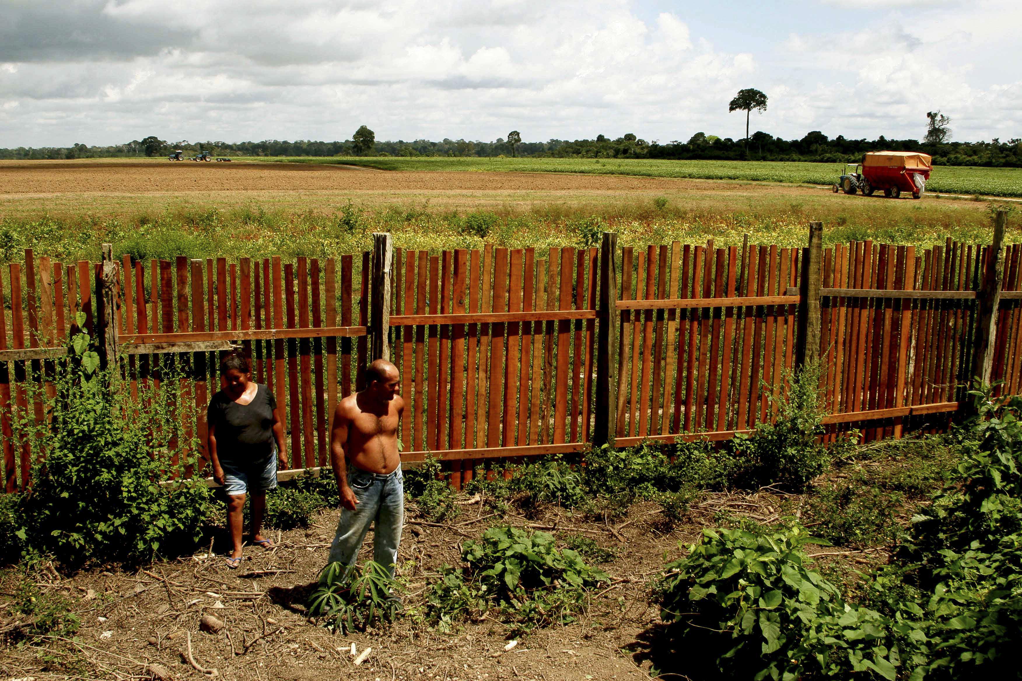 Três datas amazônicas (e também americanas)