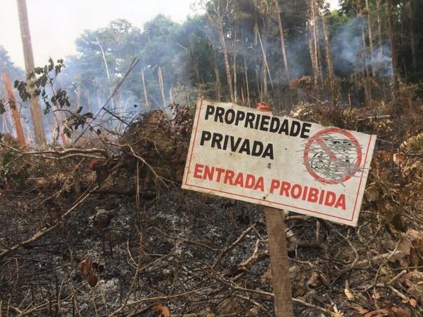 Assentamento Virola-Jatobá, projeto de Dorothy, está ameaçado por fazendeiros em Anapu