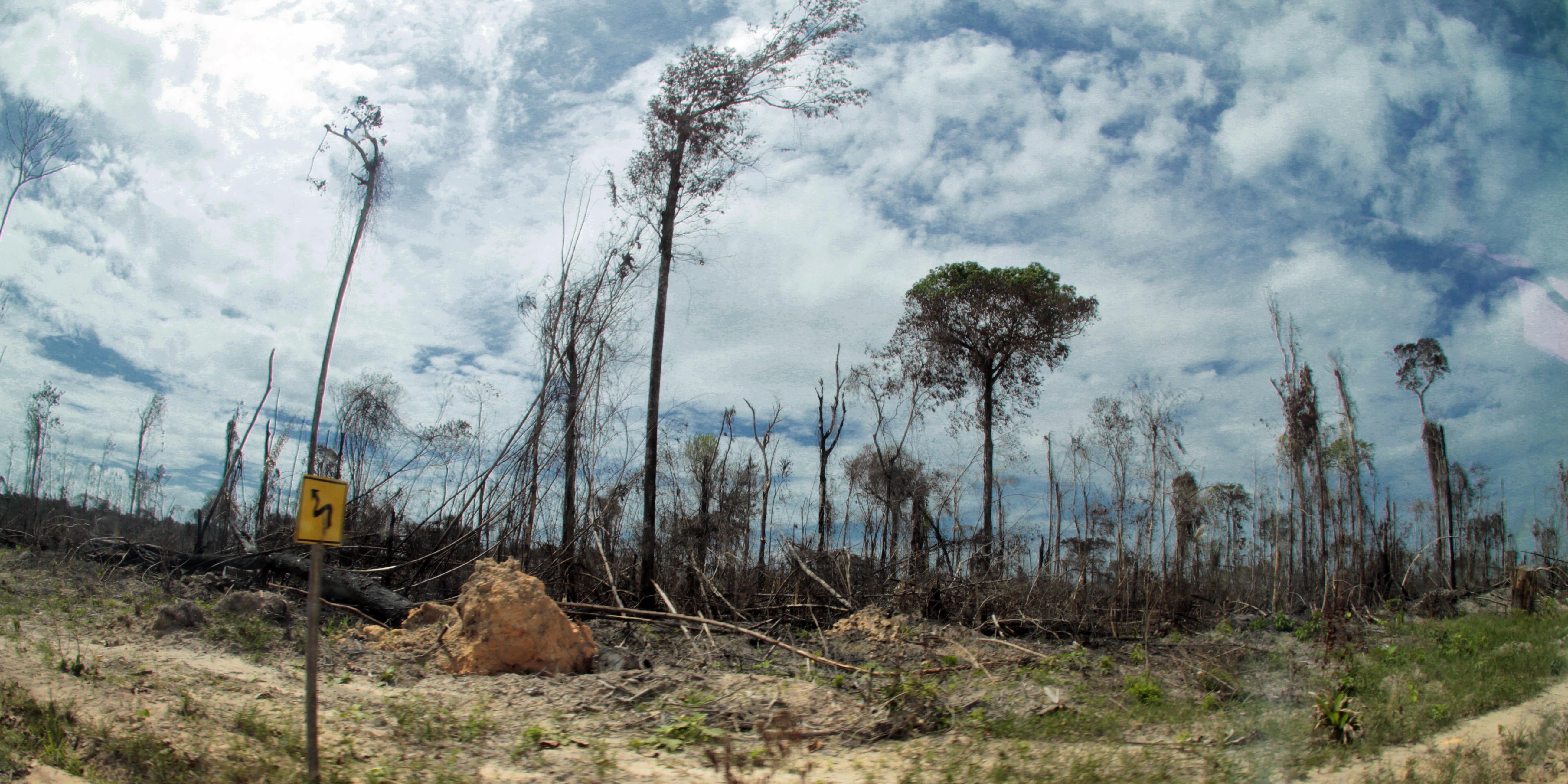 Amazônia e os Retrocessos do Momento Político