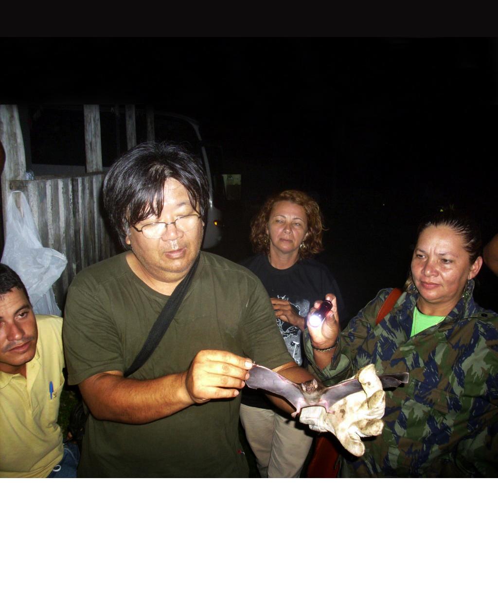 Surto de raiva humana no rio Unini pode ter apenas um morcego transmissor da doença, diz especialista