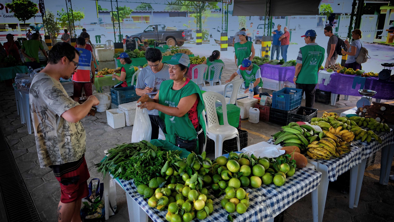 Feiras de produtos orgânicos de Manaus: saúde, saberes populares, ciência e muitas histórias para contar