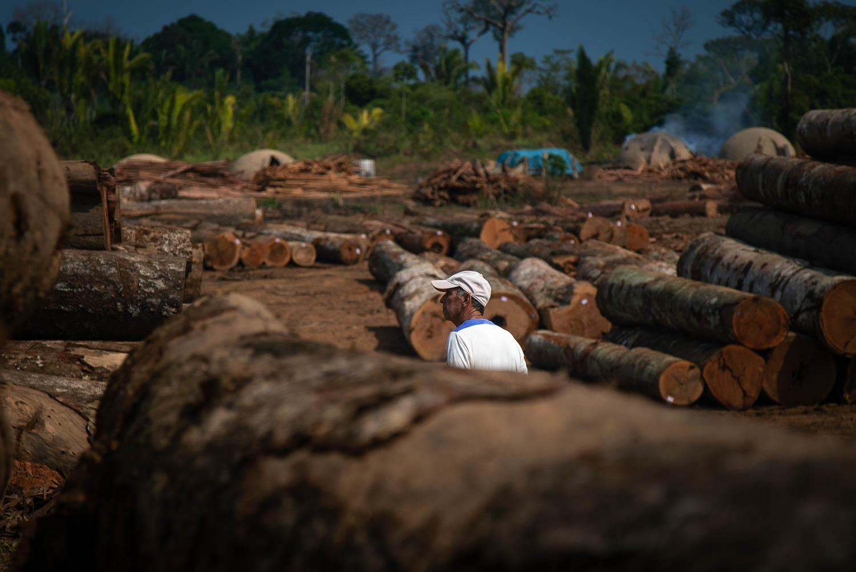 Grilagem na rodovia BR-319: 3 – Ponta de lança do desmatamento na Amazônia