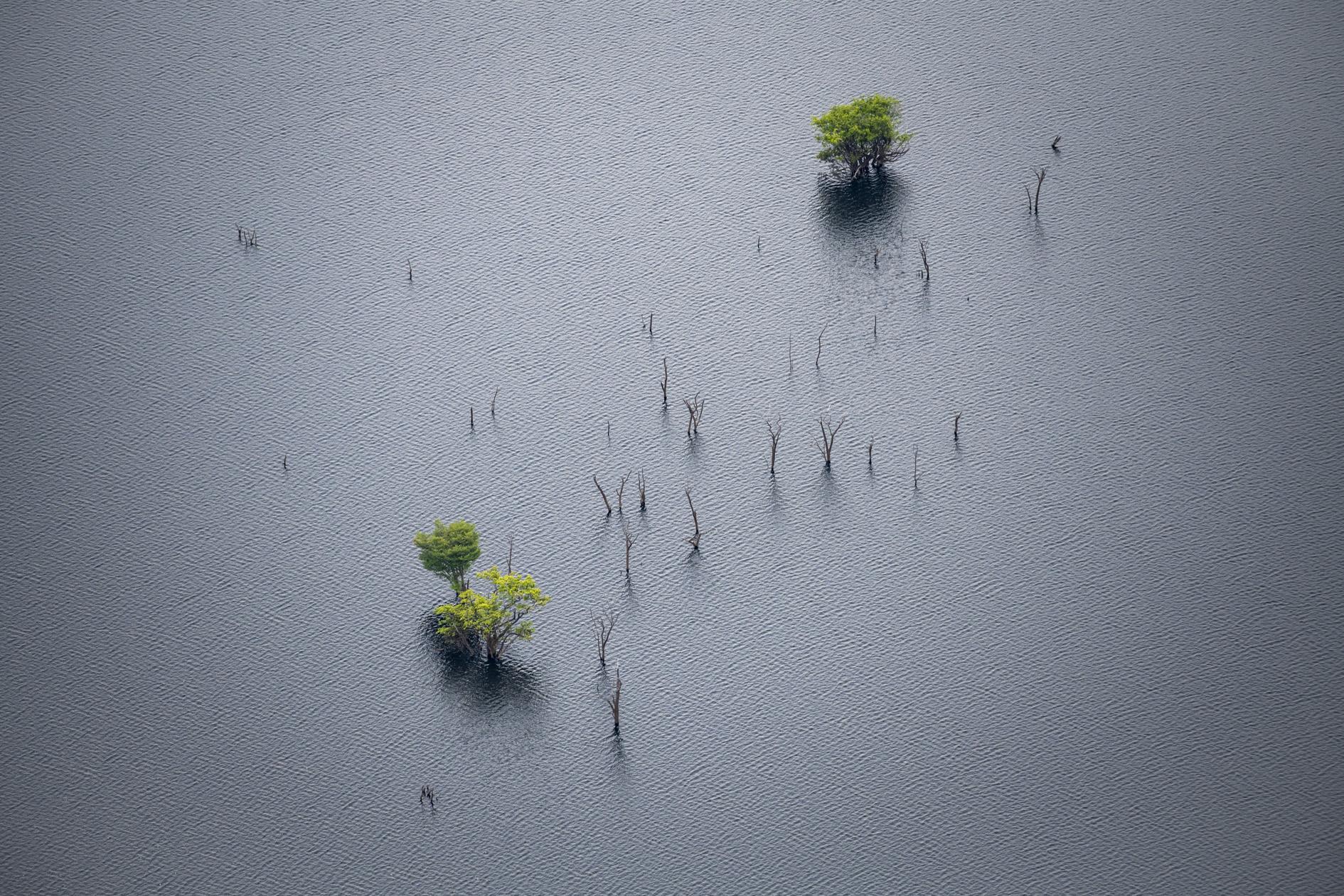 Amazônia e o Aquecimento Global: 9 – Ciclagem de Água
