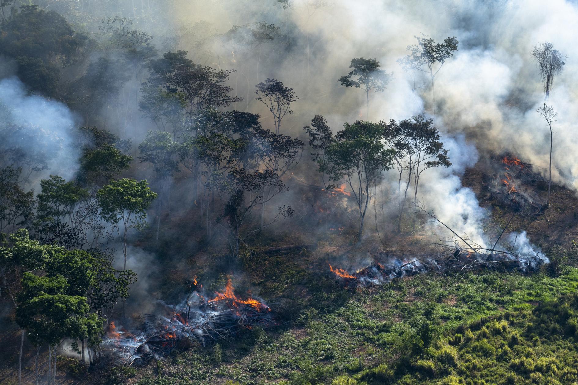 Amazônia e o Aquecimento Global: 8 – Efeito Estufa Descontrolado