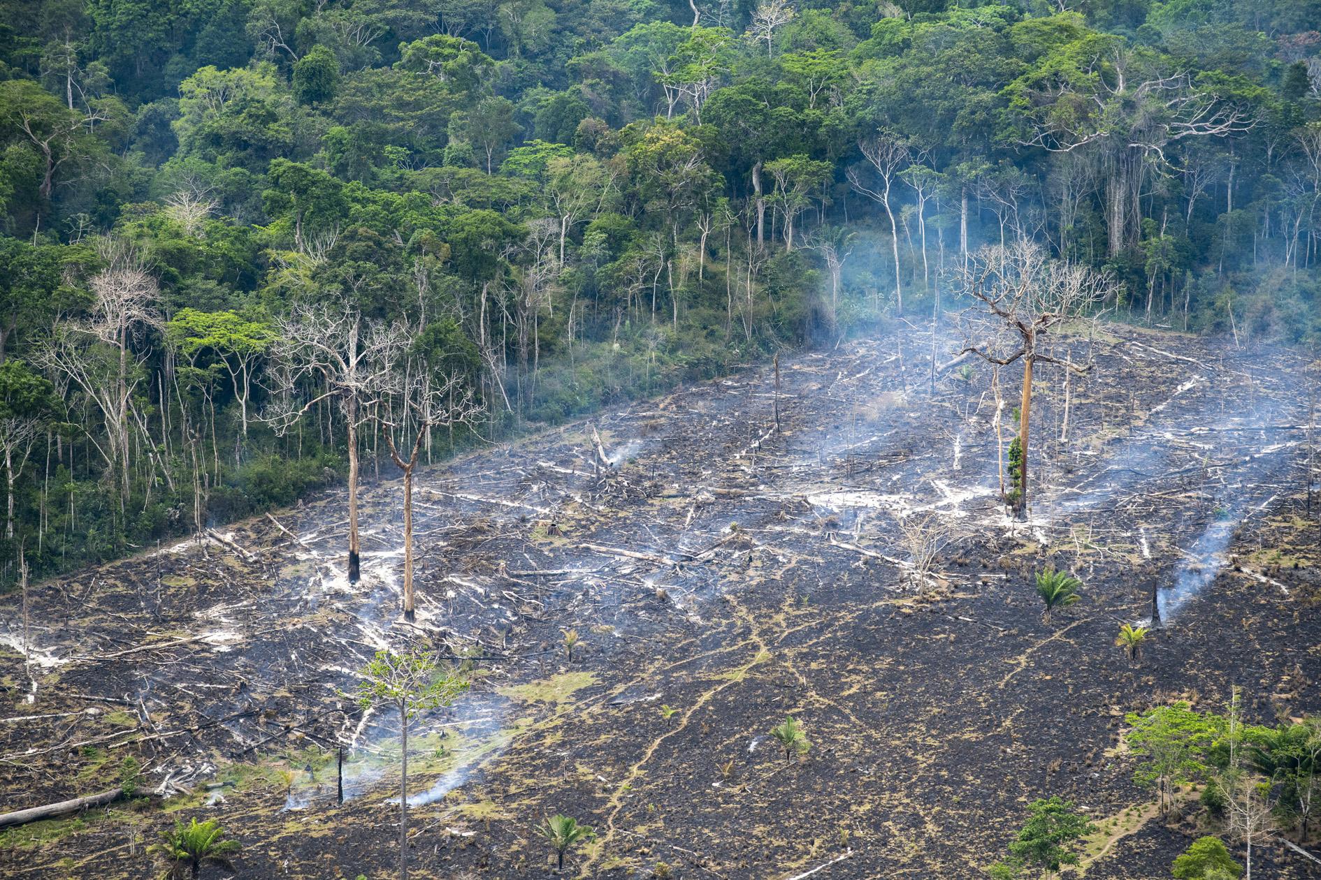 """Amazônia e o Aquecimento Global: 13 – Implicações dos """"Pontos de desequilíbrio"""" para a política"""