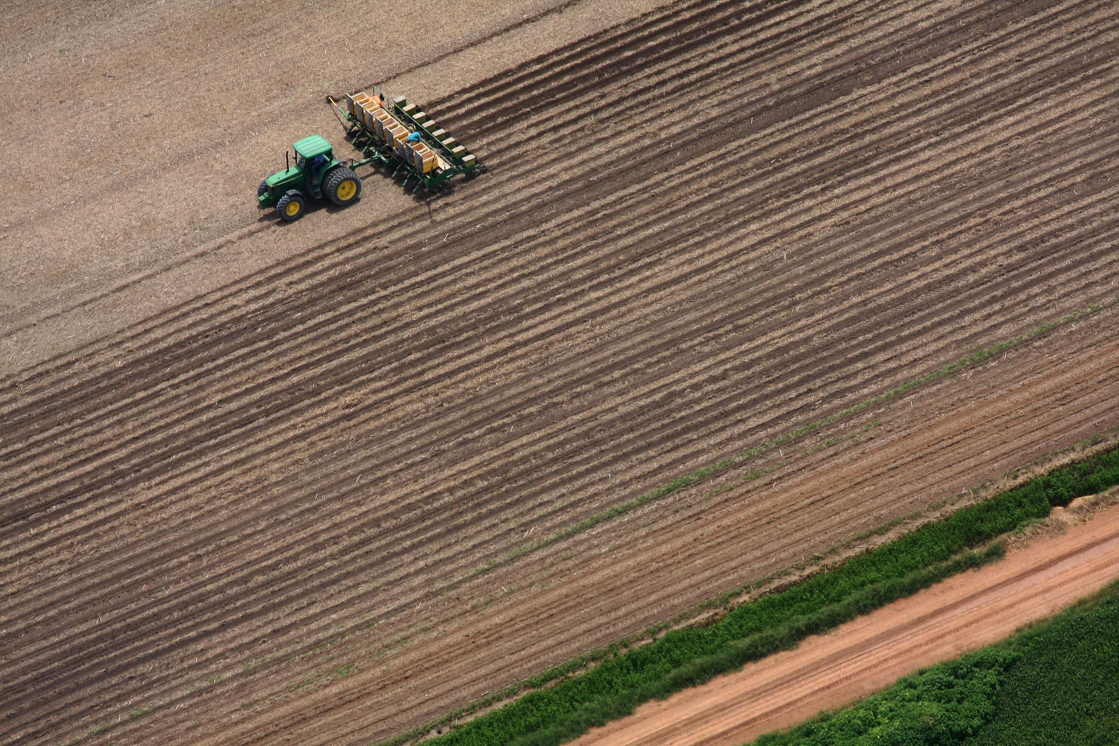 Sustentabilidade da agricultura na Amazônia – 4: O perigo de mudar para caminhos insustentáveis