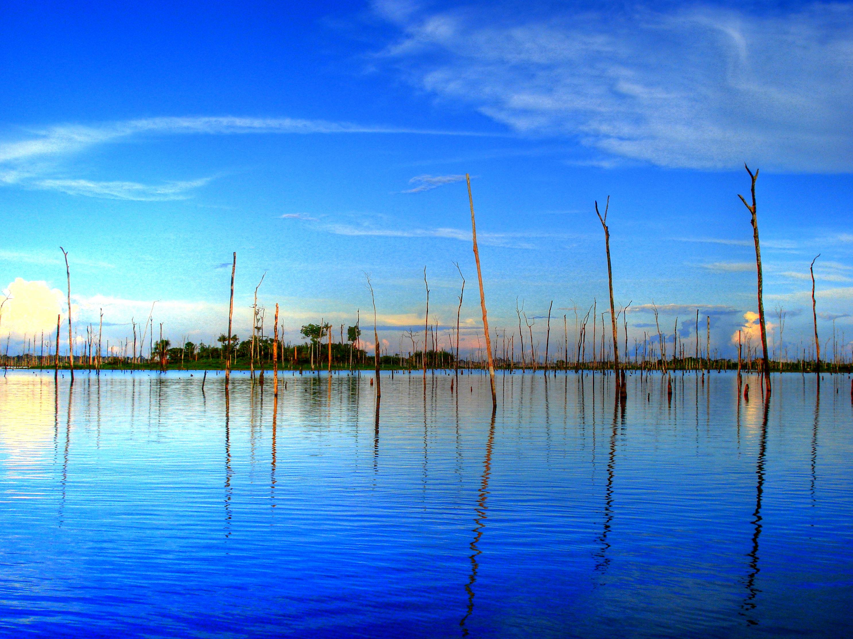 Justiça ambiental e barragens amazônicas: 4 – A história de tomada de decisão