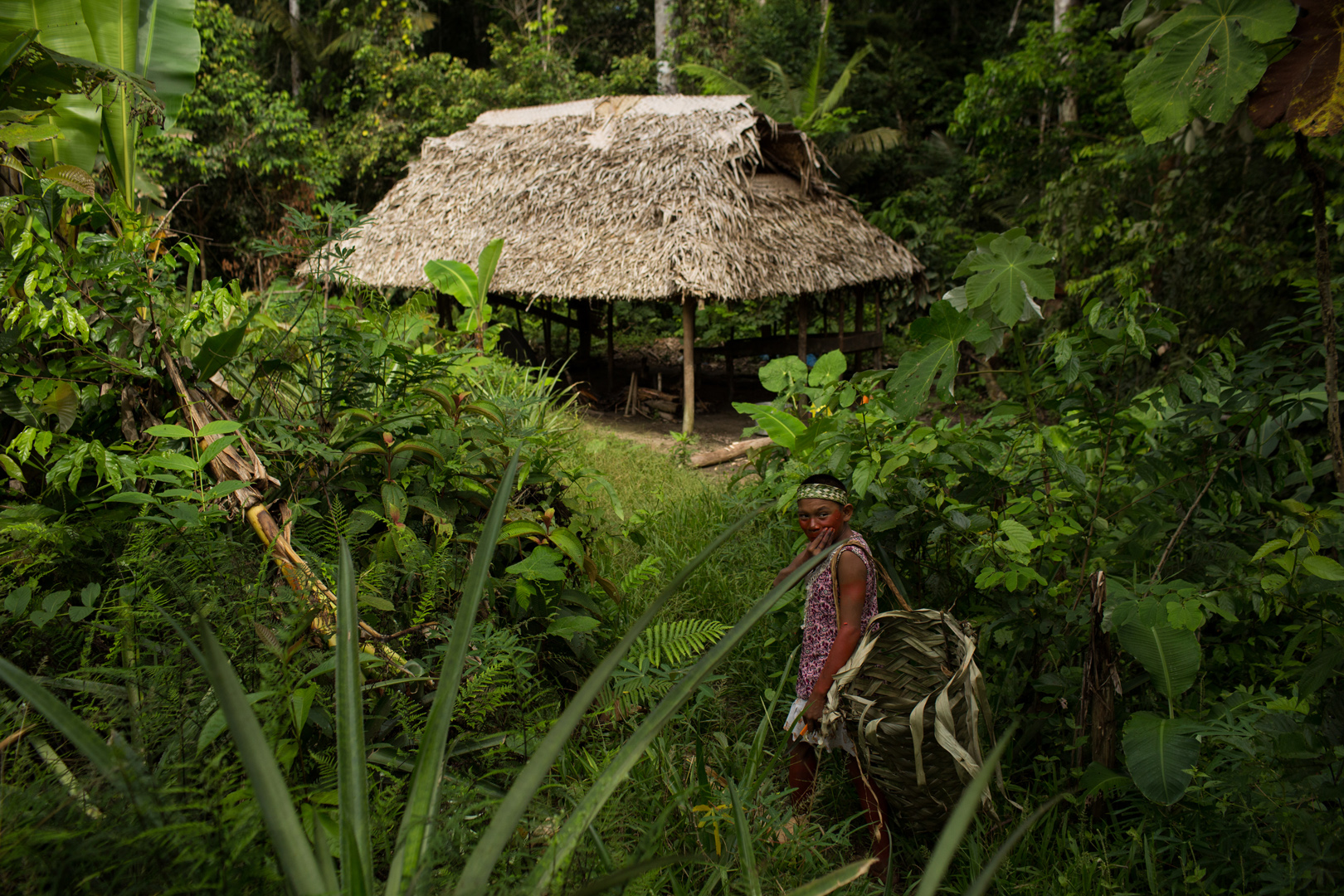 Valoração de Serviços Ambientais – 3: Biodiversidade & Sociodiversidade