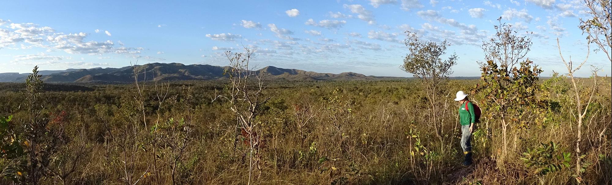Campos do Cerrado estão mais protegidos nas terras indígenas
