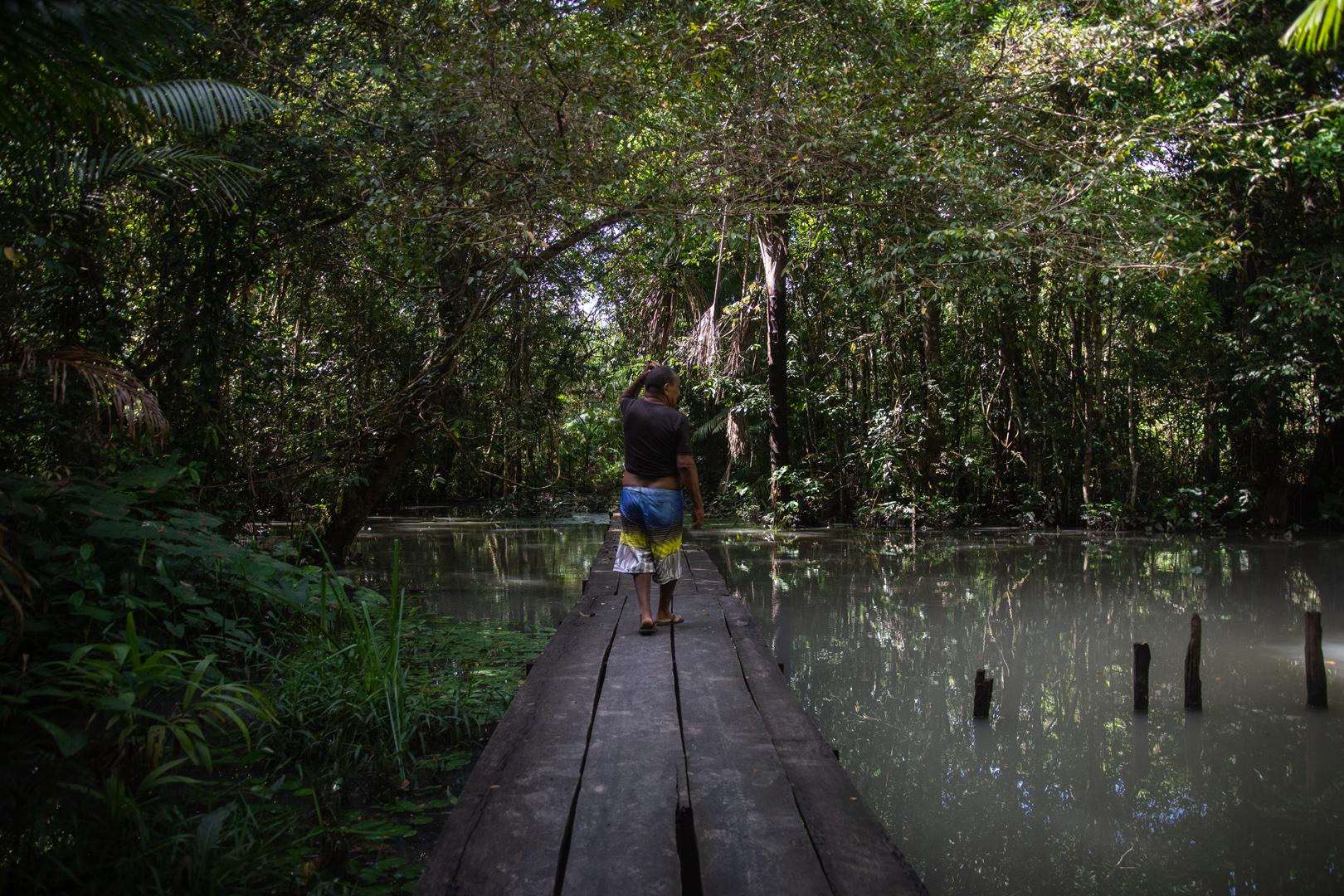 Antes e depois da poluição do rio Curuperé pela Minerva Foods, no Pará