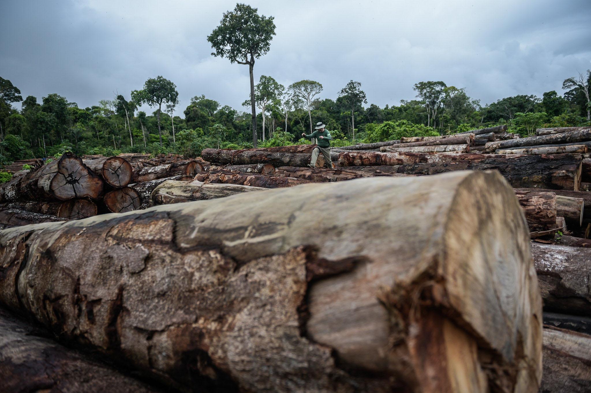 Menos Amazônia