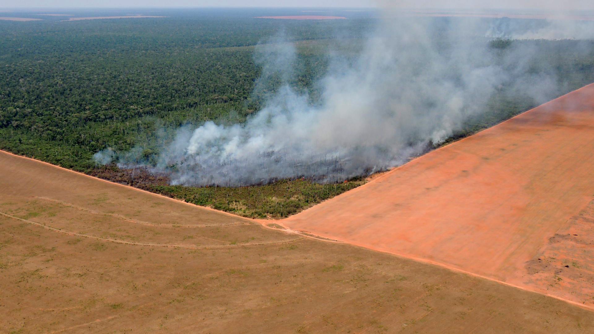 O limiar da Amazônia e as ordens de sua devastação