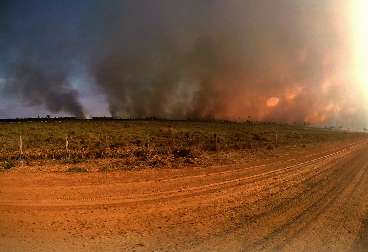 """Amazônia em Chamas: """"graças a Deus choveu!"""", diz prefeito sobre o combate às queimadas em Humaitá (AM)"""