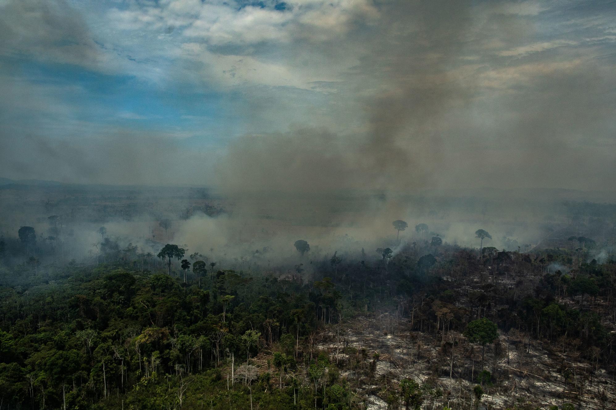 """Amazônia em Chamas: jornalista que denunciou """"dia do fogo"""" é atacado em redes sociais em Novo Progresso (PA)"""