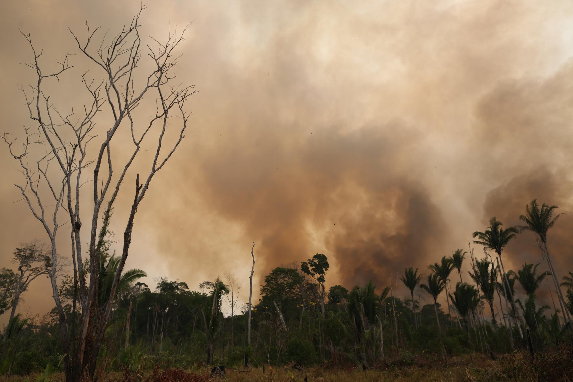 BR-319 ameaça povos indígenas 3: Identificação dos povos impactados