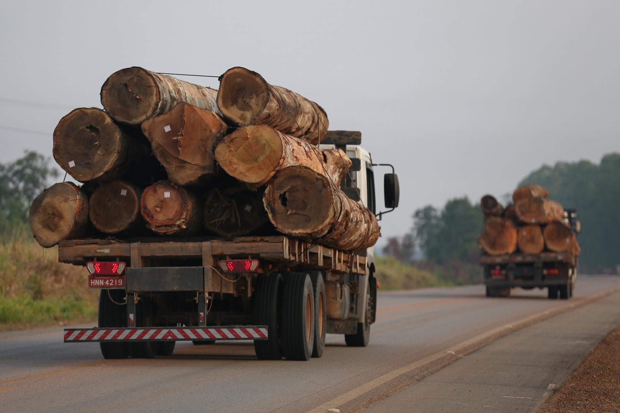 O Desmatamento da Amazônia Brasileira: 9 – Estradas