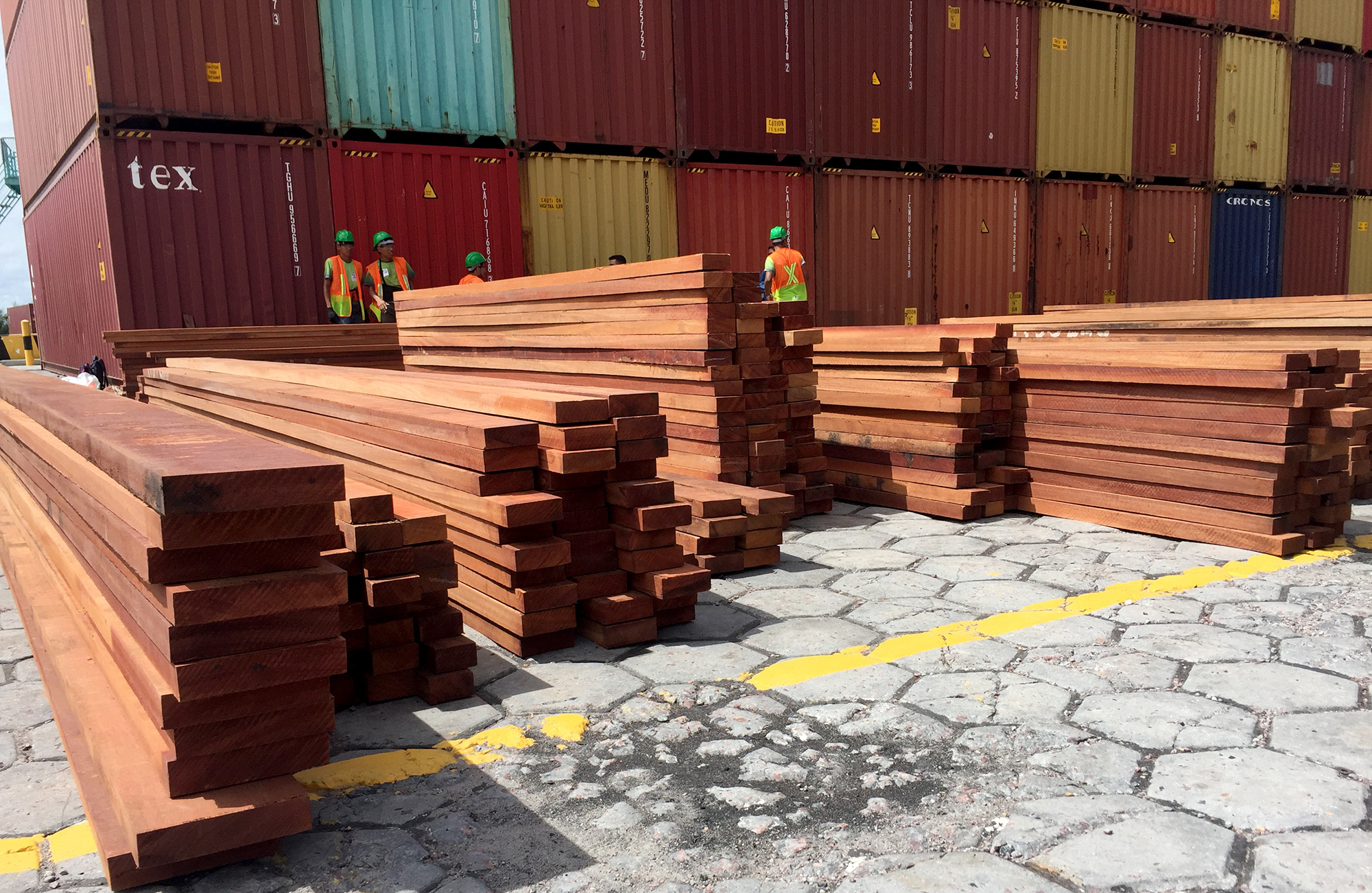 Amazônia em Chamas: 90% da madeira exportada são ilegais, diz Polícia Federal
