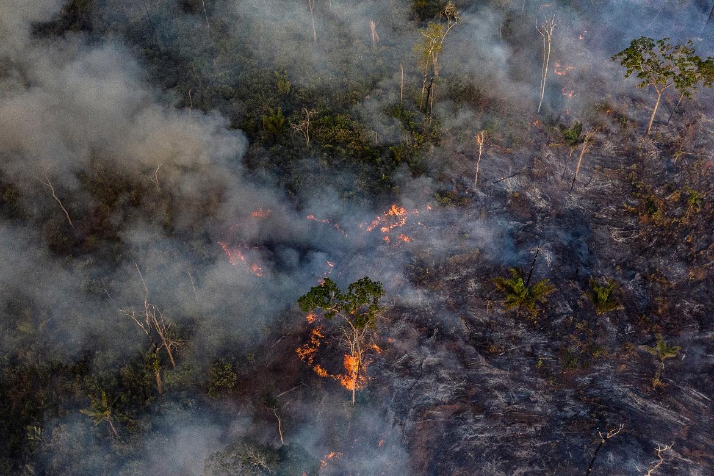 Amazônia em Chamas: indígenas Manoki denunciam incêndios criminososno Mato Grosso
