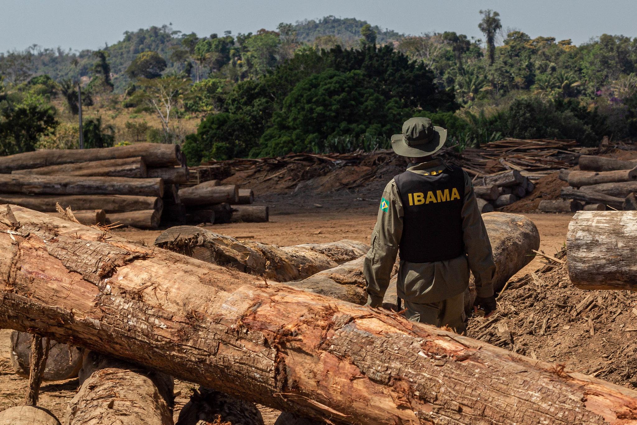 O Desmatamento da Amazônia Brasileira: 15 – Controle por meio da repressão