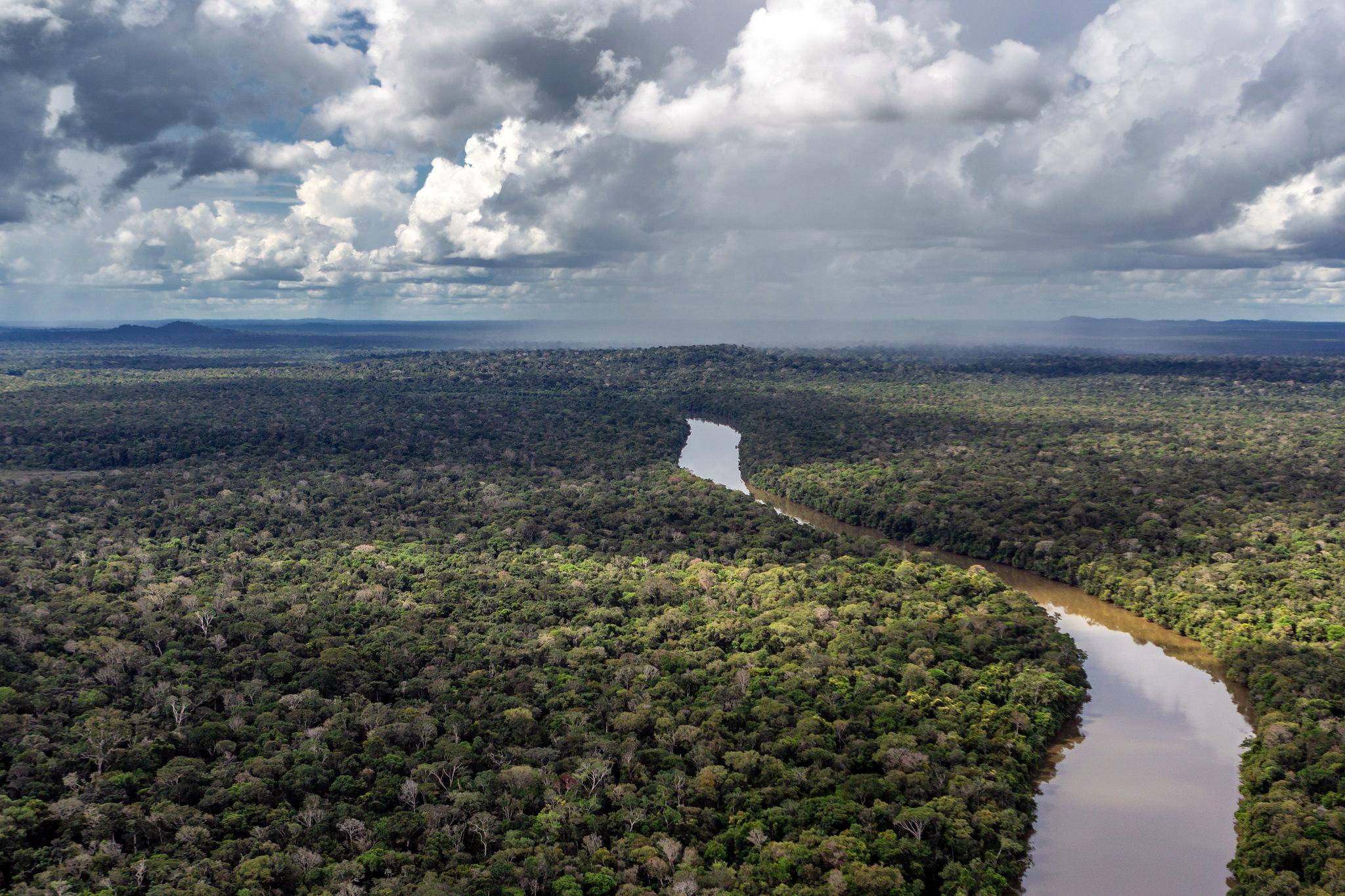 Amazônia, um mundo esquecido