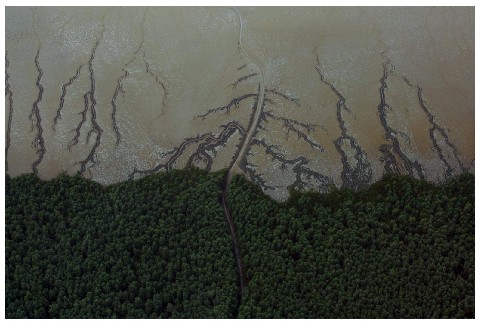 Valoração de Serviços Ambientais – 4: Ciclagem de Água