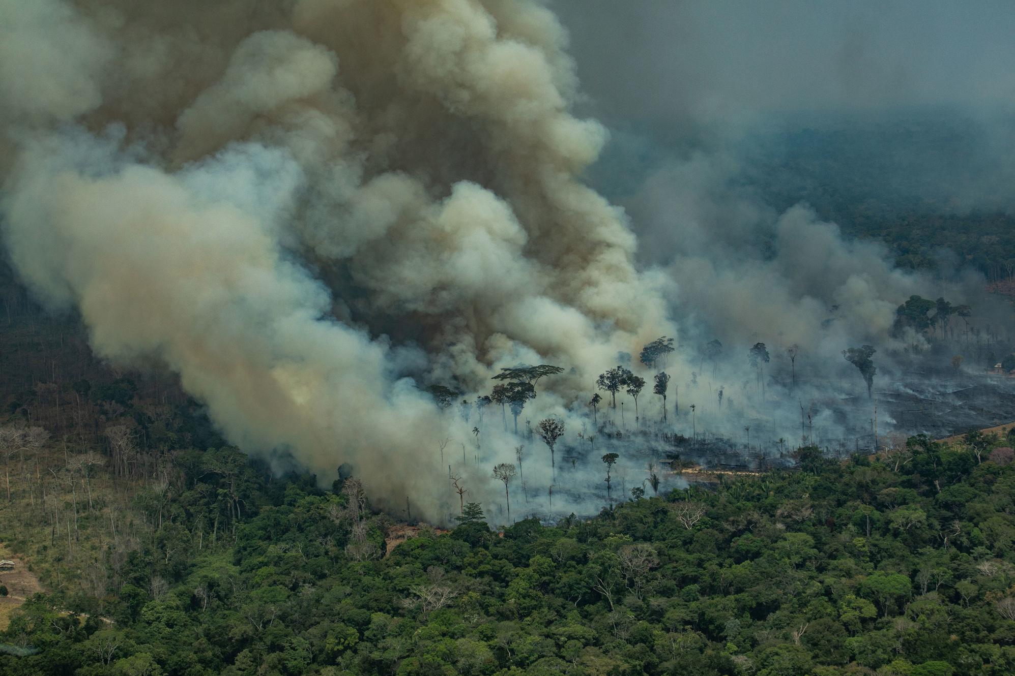 Retrospectiva 2019: o que foi notícia na Amazônia pelo olhar dos jornalistas